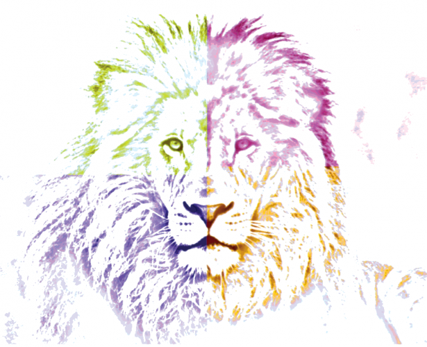 Lion Art | Canvas